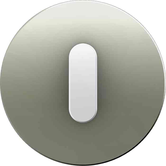 Поворотный выключатель на 2 направления Berker R.classic нержавеющая сталь/полярная белизна 387500 + 10012014
