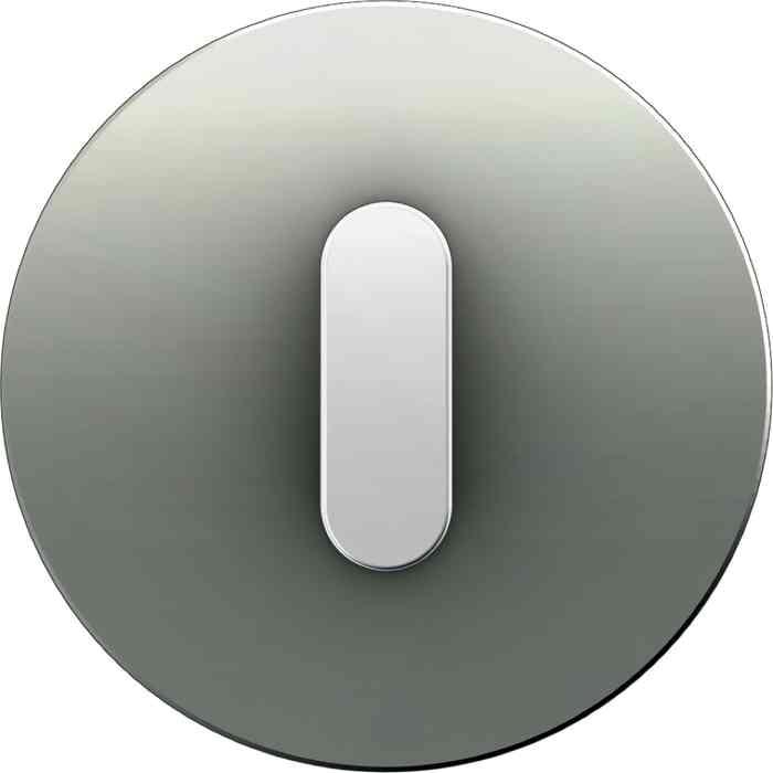 Поворотный выключатель-переключатель Berker R.classic алюминий/полярная белизна 387600 + 10012074